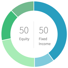 50% equity 50% fixed income