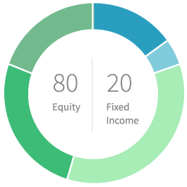 80% equity 20% fixed income