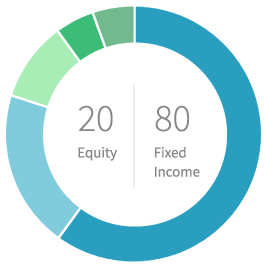 20% equity 80% fixed income